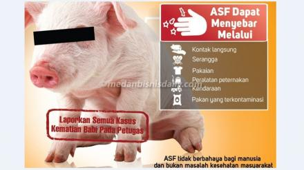 Himbauan Terhadap Wabah Penyakit Babi